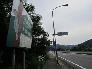 IMG_4521.JPG
